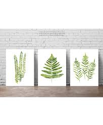 Fern Decor by Fern Watercolor Painting Set 3 Ferns Kitchen Art Print