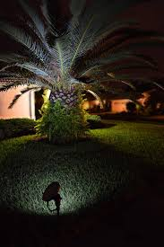 palm tree solar lights stand alone solar spotlight light by free light solar lights for