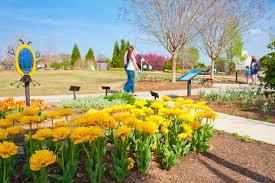Garden Botanical Botanical Garden