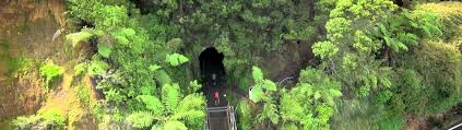 The New Zealand Cycle Trail Official Website The Hauraki Rail Trail New Zealand Official Website