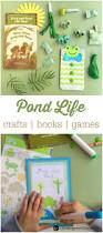 pond life activities for kids the kindergarten connection