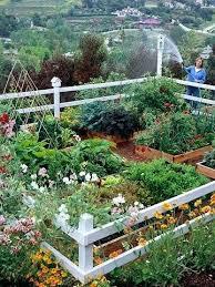 Fall Vegetable Garden Ideas Pretty Backyard Designandcode Club