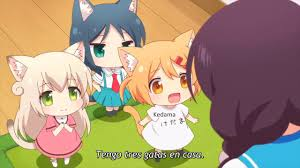 Seeking Capitulo 1 Subtitulado Nyanko Days Capitulo 1 Sub Español