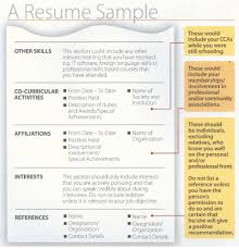 awesome special achievements in resume contemporary simple