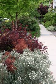 256 best front yard landscaping u0026 plants images on pinterest