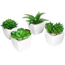 mini plants set of 4 modern white ceramic mini potted artificial succulent