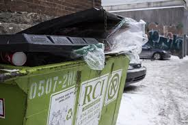 Seeking Dumpster Dumpster Diving Culture News The Link
