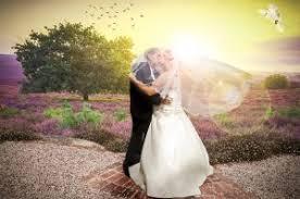 san francisco wedding photographer choosing the san francisco wedding photographer lema green