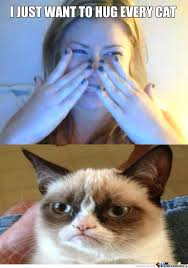 No Grumpy Cat Meme - no hugs grumpy cat meme hugs best of the funny meme