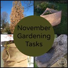 november gardening tips five things to do right now new house