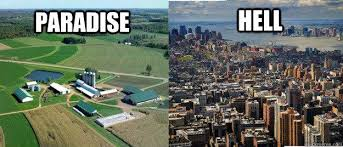 Farmer Meme - farming memes home facebook