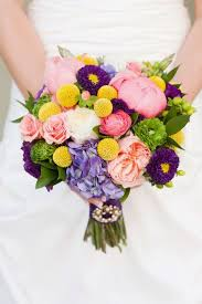Wedding Flowers August 68 Best Matsumoto Aster Wedding Flowers Images On Pinterest
