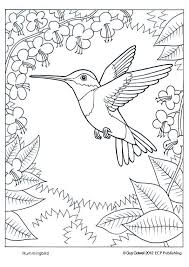 890 bird colouring images drawings coloring
