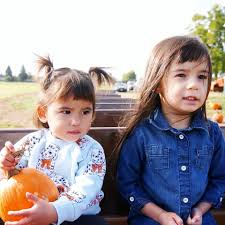Roloffs Pumpkin Patch In Hillsboro Or by Lakeview Farms Home Facebook