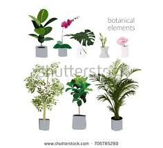 home plants download free vector art stock graphics u0026 images