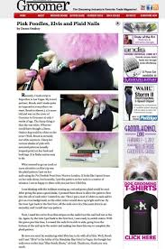 dog nail polish things you should know about