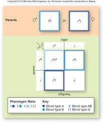 f10 10 inheritance of a c jpg