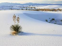 sand dune jeep mui ne sand dunes jeep tour 5 usd white sand dunes red sand