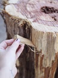 diy tree stump side tables u2013 a beautiful mess