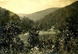 pine mountain settlement archives pine mountain