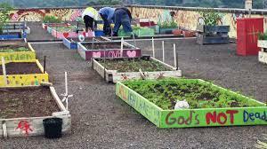 this rooftop garden is feeding atlanta u0027s homeless munchies