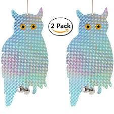 hanging owls home decor amazon com