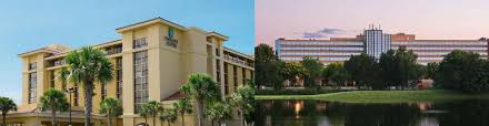 best things to do in longwood fl stuff to see