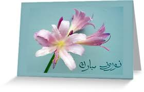 nowruz greeting cards happy norooz in farsi new year greeting