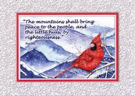 kjv scripture cards cardinal 10 pack bible baptist
