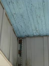 Beadboard Porch Ceiling by Refinishing Beadboard Porch Ceiling Painting Diy Chatroom
