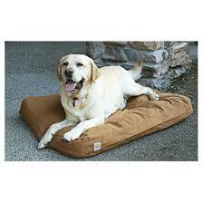 Camo Dog Bed Cuddler Rectangle Dog Bed Mossy Oak Camo 657470 Kennels U0026 Beds