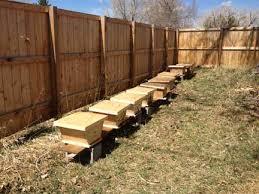 How To Build Top Bar Hive Backyardhive Com The Top Bar Hive Nuc Nucleus