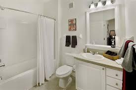 Apartment Bathroom Storage Ideas by Download College Apartment Bathroom Gen4congress Com
