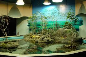 Home Aquarium Design Cool Exceptional Aquarium Architecture Toobe8 Awesome Of