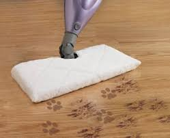 best steam mop for tile floors in 2016 steam cleanery