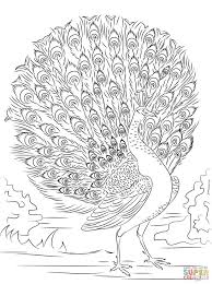 217 best coloring pages images on pinterest coloring books