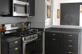 Dark Wood Kitchen Cabinets With Glass Black Cabinets With Glass Doors Gallery Glass Door Interior