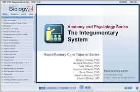 Chemistry In Anatomy And Physiology Anatomy And Physiology The Integumentary System