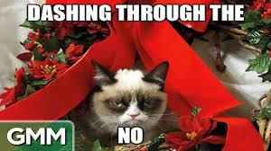 19 Awesome Grumpy Cat Christmas - wrapping a cat for christmas youtube