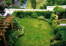 Evergreen Landscaping Ideas Lawn Garden The Border From Edging Ideas Of Flower Your For Loversiq