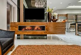 Realistic Electric Fireplace Dimplex Electric Fireplaces Modern Blaze
