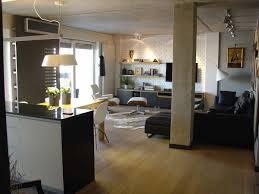 french interior traditions in modern apartment interpretation