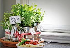 kitchen herb garden ideas kitchen herb garden ideas carters kitchenion amazing kitchen