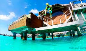 bora bora bora bora island paradise dream vacation gabe and garrett
