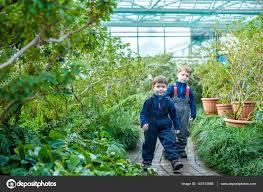 serre jardin d hiver amis de frères de deux garçons s u0027amusant à effet de serre jardin