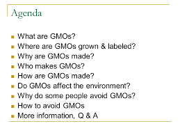 Genetically Modified Organisms Gmos Ppt Video Online Download