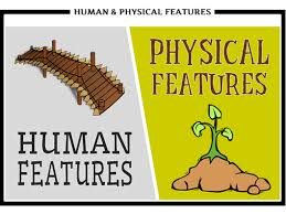 comparing human and physical features by kirstymc1 teaching