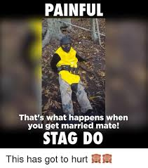 Stag Party Meme - 25 best memes about stag stag memes