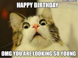 Cat Meme Ladies - happy birthday meme for woman happy wishes