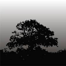 vector for free use black tree vector